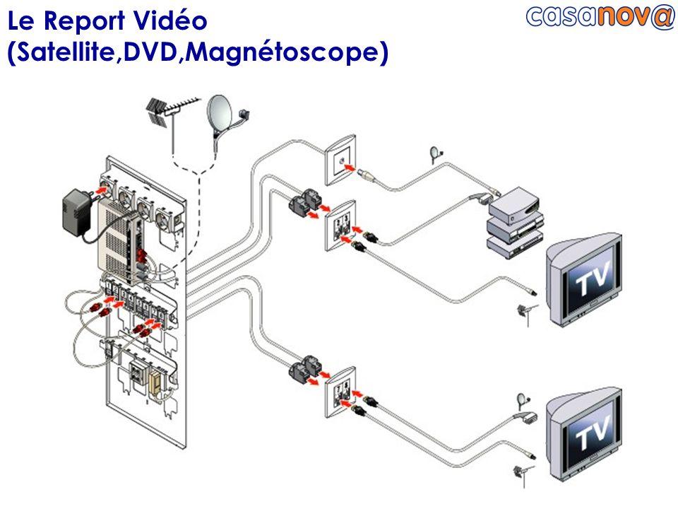 Le Report Vidéo (Satellite,DVD,Magnétoscope)
