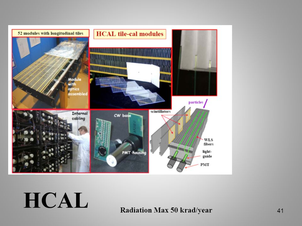 HCAL Radiation Max 50 krad/year