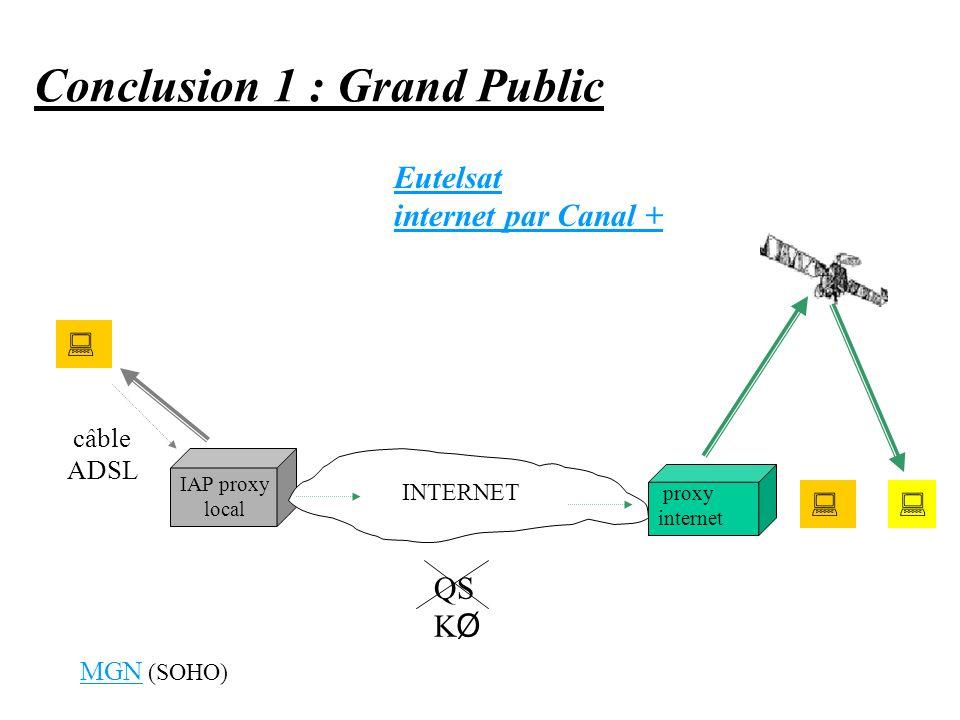 Conclusion 1 : Grand Public