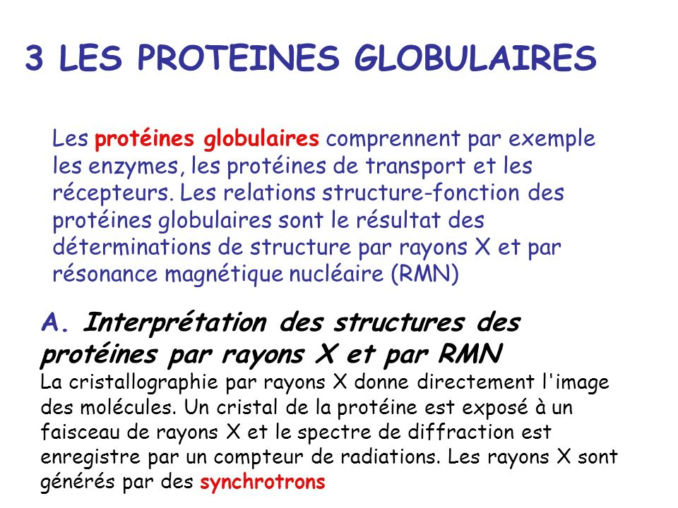 3 LES PROTEINES GLOBULAIRES