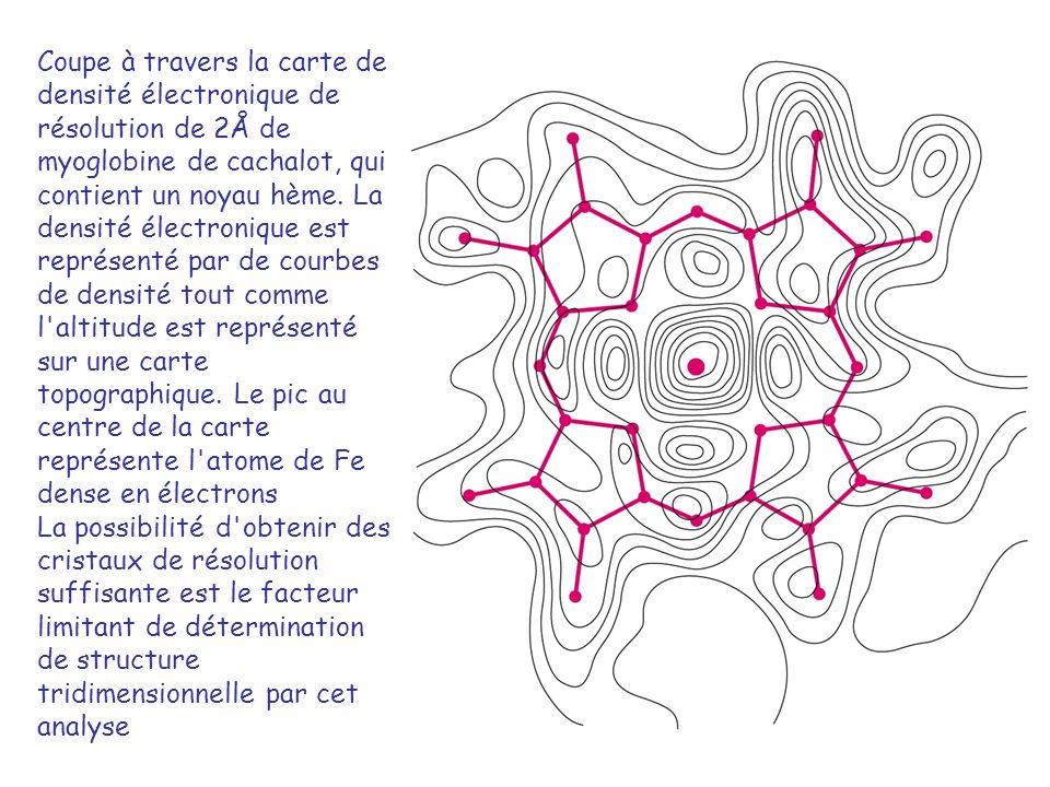 Coupe à travers la carte de densité électronique de résolution de 2Å de myoglobine de cachalot, qui contient un noyau hème. La densité électronique est représenté par de courbes de densité tout comme l altitude est représenté sur une carte topographique. Le pic au centre de la carte représente l atome de Fe dense en électrons