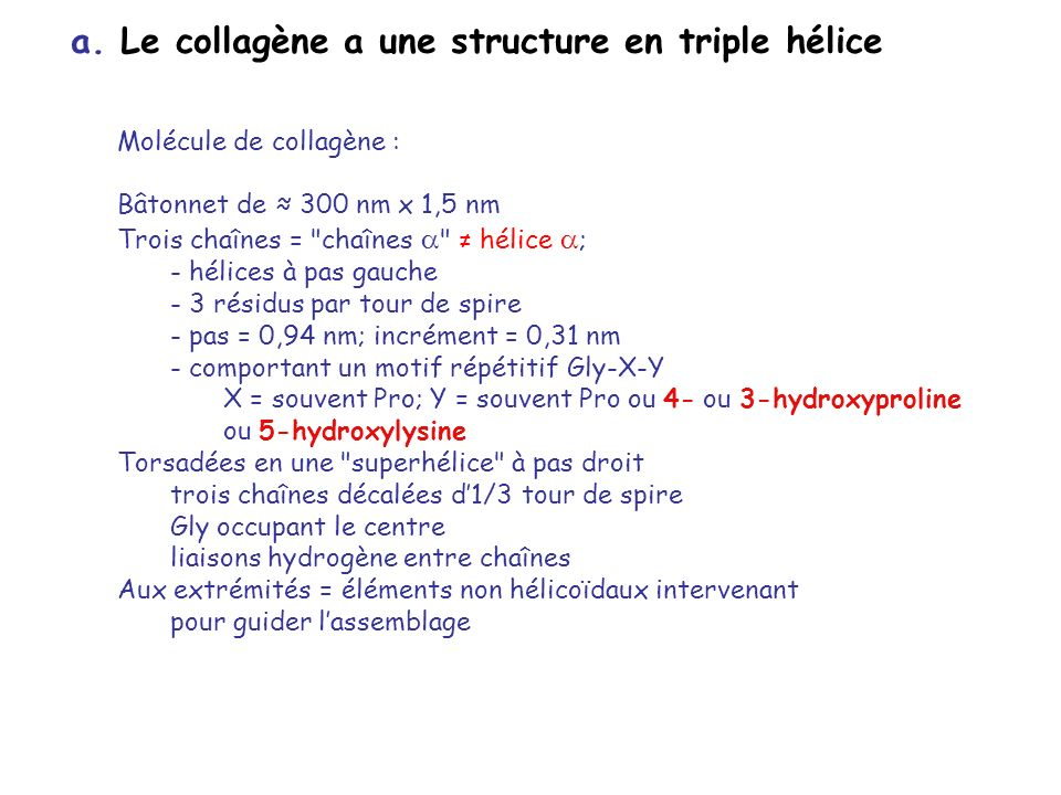 a. Le collagène a une structure en triple hélice