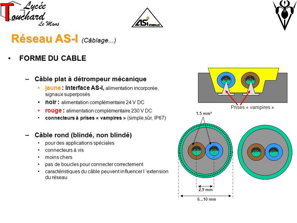 Réseau AS-I (Câblage...) FORME DU CABLE