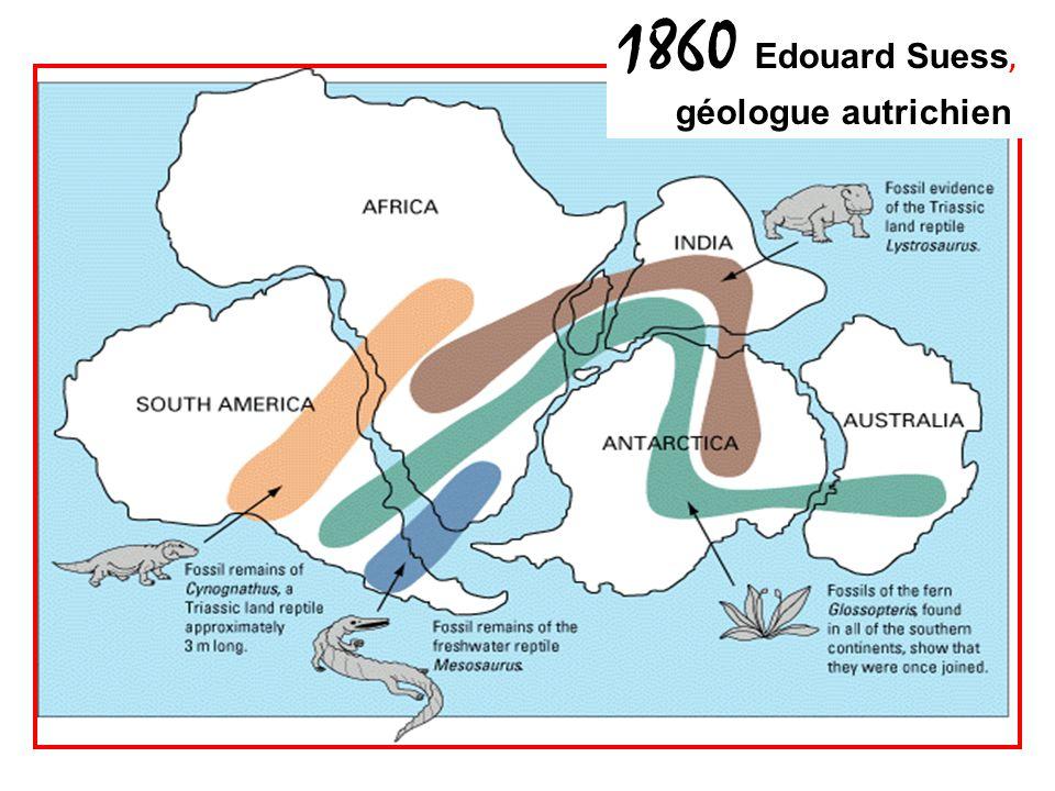 1860 Edouard Suess, géologue autrichien