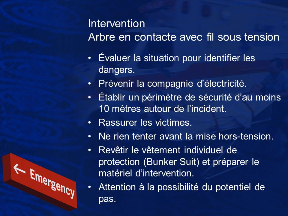 Intervention Arbre en contacte avec fil sous tension