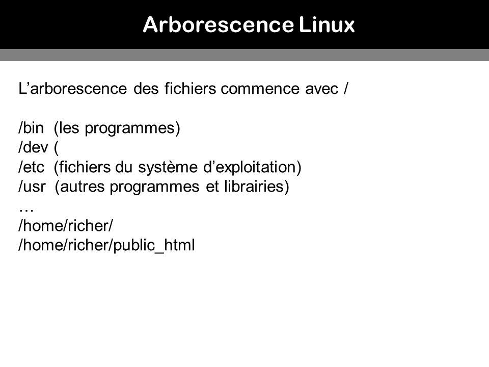 Arborescence Linux L'arborescence des fichiers commence avec /