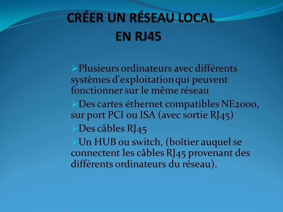 CRÉER UN RÉSEAU LOCAL EN RJ45