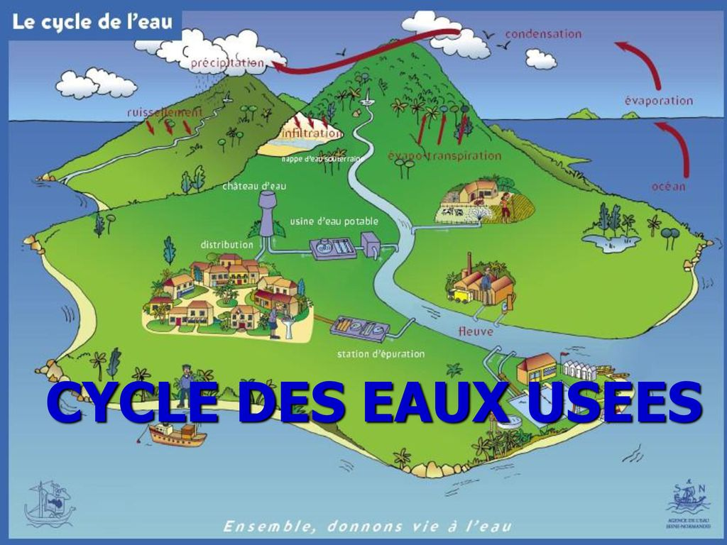 CYCLE DES EAUX USEES