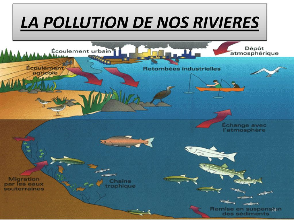 LA POLLUTION DE NOS RIVIERES