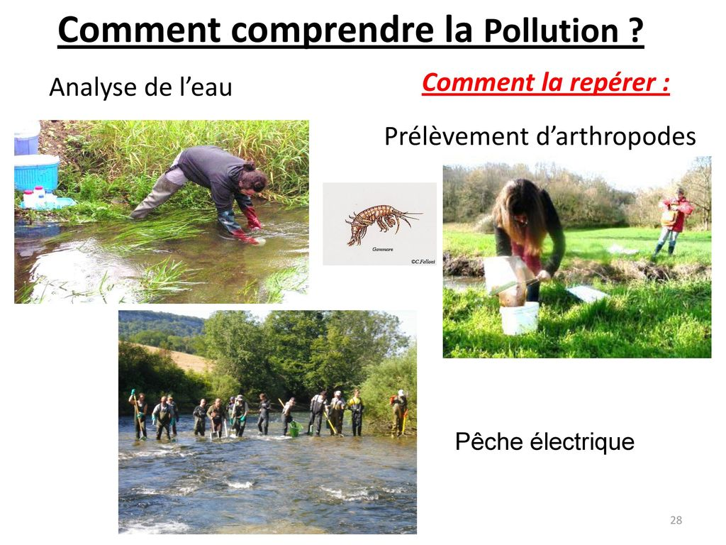 Comment comprendre la Pollution
