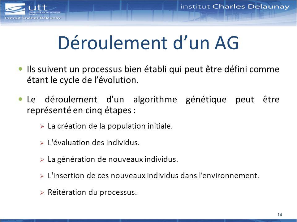 Déroulement d'un AG Ils suivent un processus bien établi qui peut être défini comme étant le cycle de l'évolution.