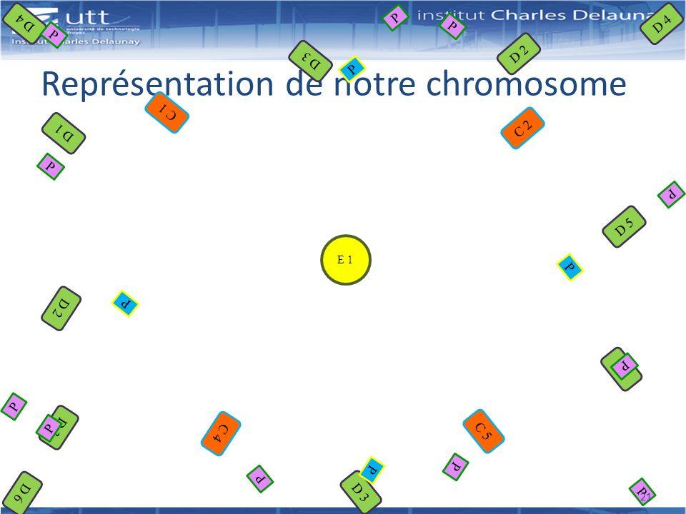 Représentation de notre chromosome