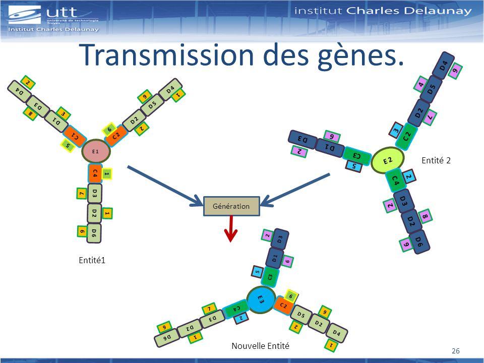 Transmission des gènes.