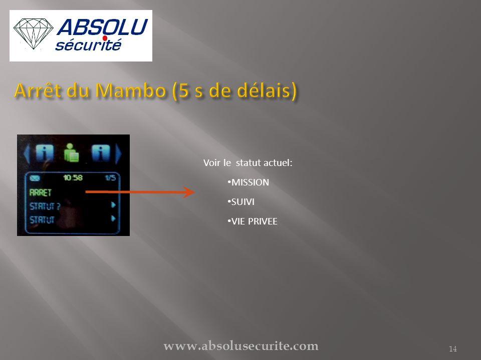 Arrêt du Mambo (5 s de délais)