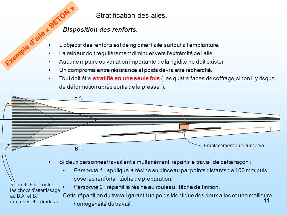 Stratification des ailes.