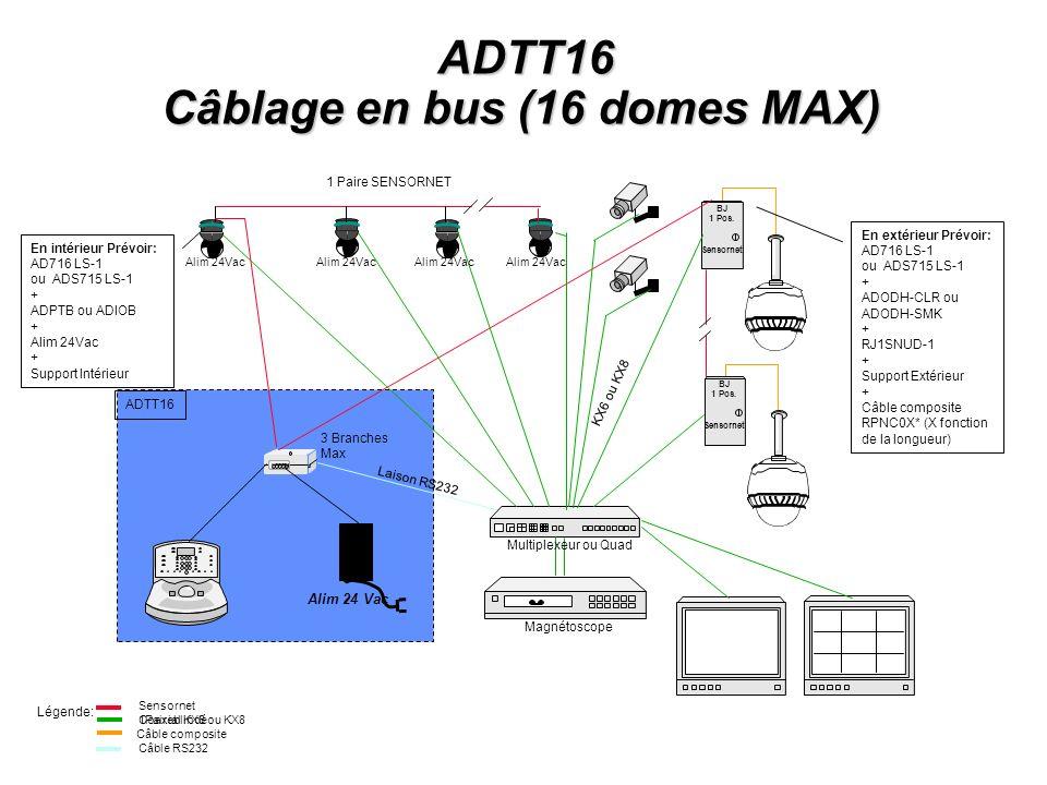 Câblage en bus (16 domes MAX)