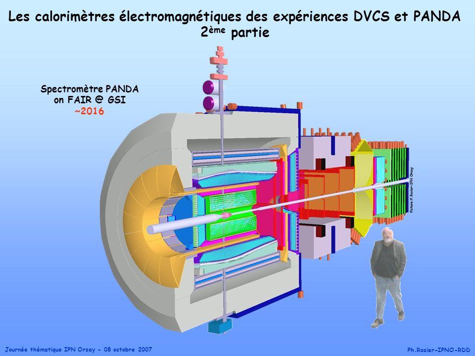 Les calorimètres électromagnétiques des expériences DVCS et PANDA