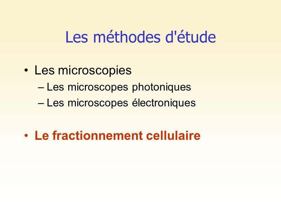 Les méthodes d étude Les microscopies Le fractionnement cellulaire