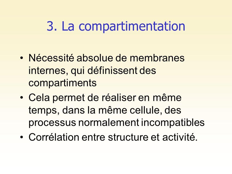 3. La compartimentation Nécessité absolue de membranes internes, qui définissent des compartiments.