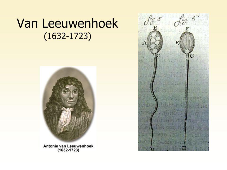 Van Leeuwenhoek (1632-1723)
