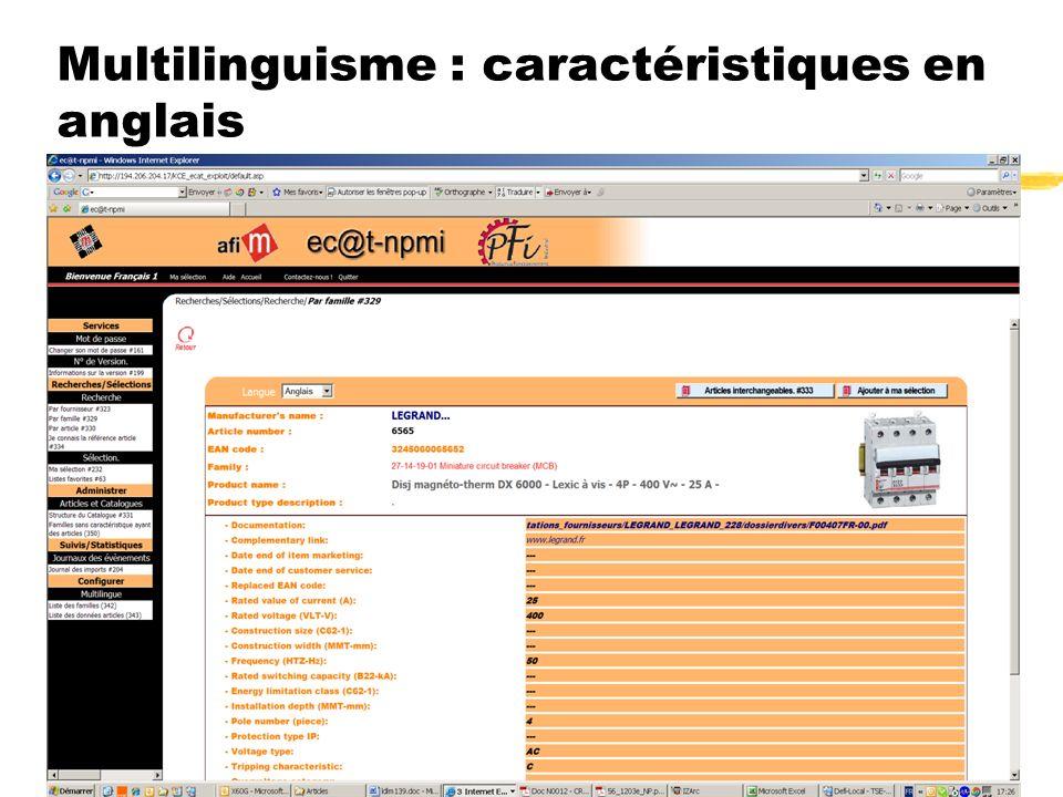 Multilinguisme : caractéristiques en anglais