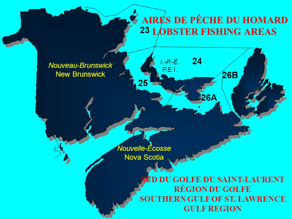 AIRES DE PÊCHE DU HOMARD LOBSTER FISHING AREAS