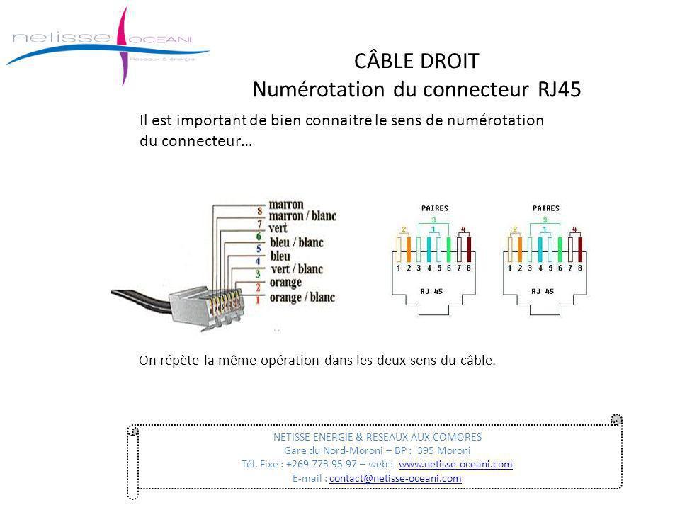CÂBLE DROIT Numérotation du connecteur RJ45