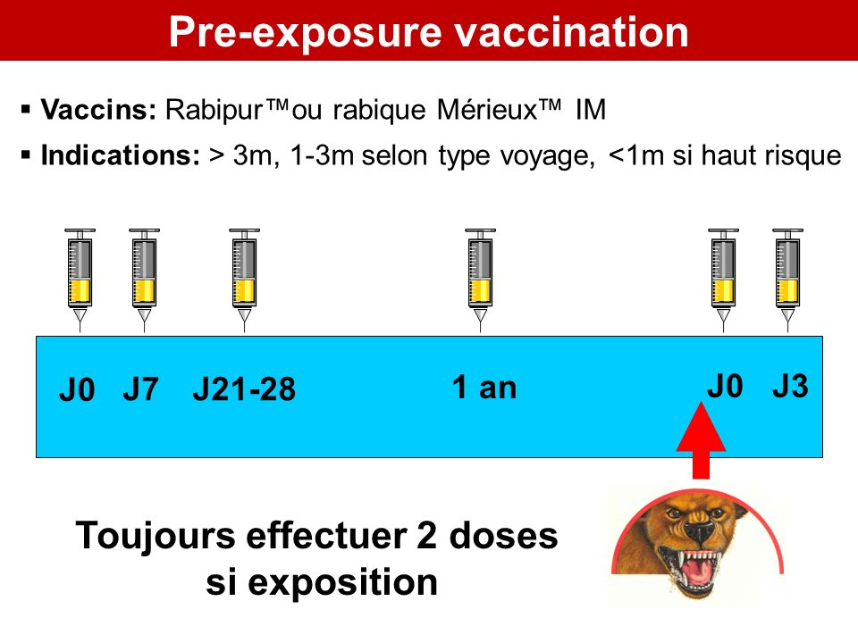 Pre-exposure vaccination Toujours effectuer 2 doses si exposition