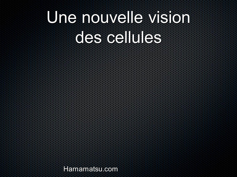 Une nouvelle vision des cellules