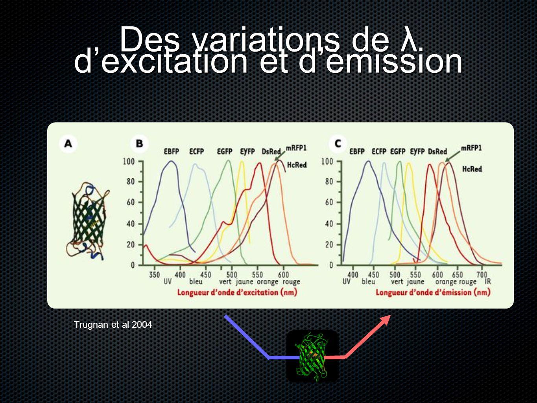 Des variations de λ d'excitation et d'émission