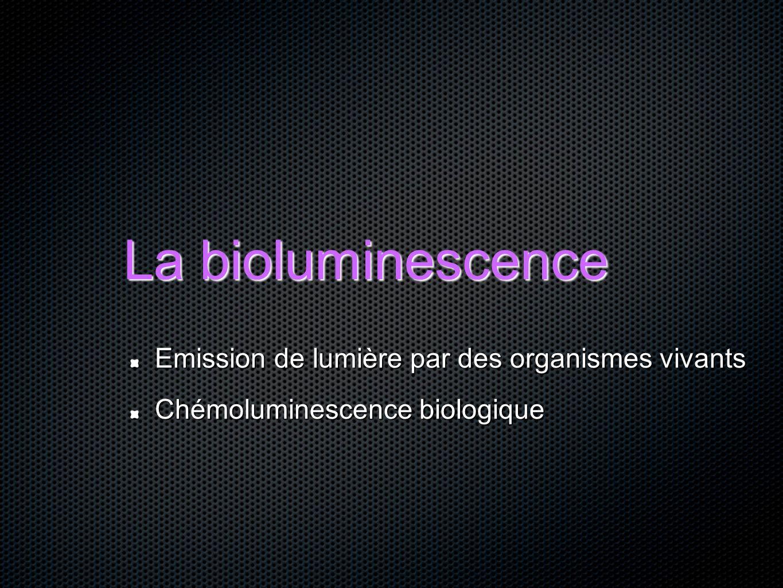 La bioluminescence Emission de lumière par des organismes vivants