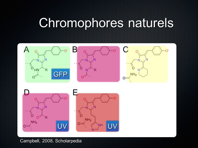 Chromophores naturels