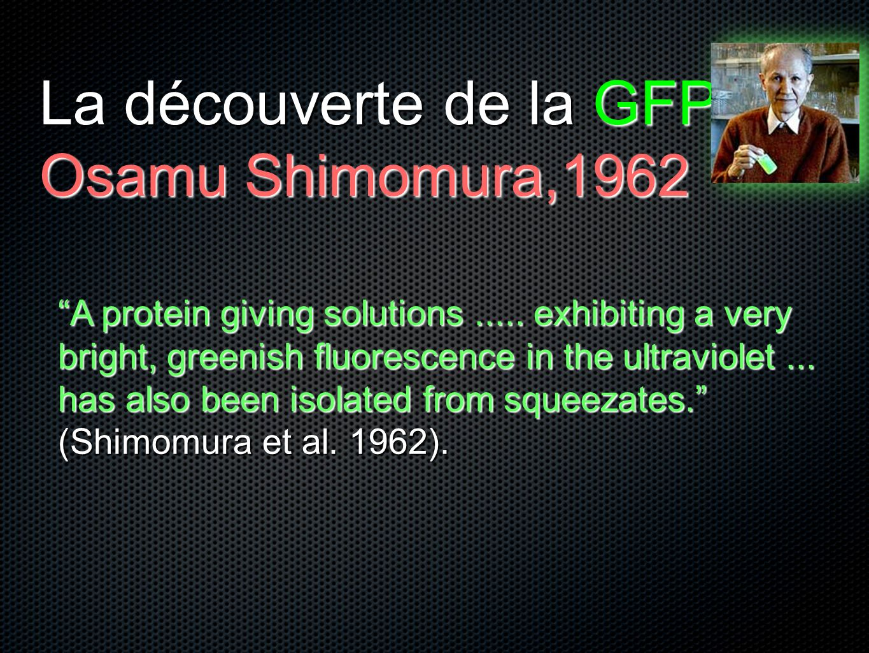 La découverte de la GFP Osamu Shimomura,1962