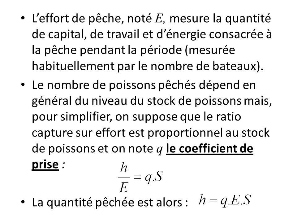 L'effort de pêche, noté E, mesure la quantité de capital, de travail et d'énergie consacrée à la pêche pendant la période (mesurée habituellement par le nombre de bateaux).