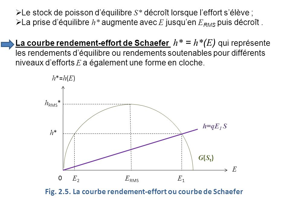 Fig. 2.5. La courbe rendement-effort ou courbe de Schaefer