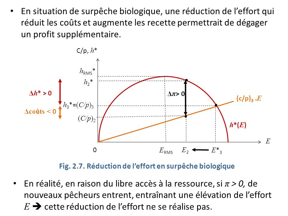 Fig. 2.7. Réduction de l'effort en surpêche biologique
