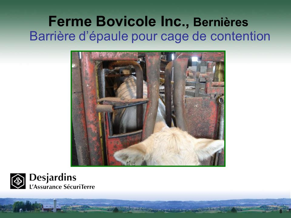 Ferme Bovicole Inc., Bernières Barrière d'épaule pour cage de contention
