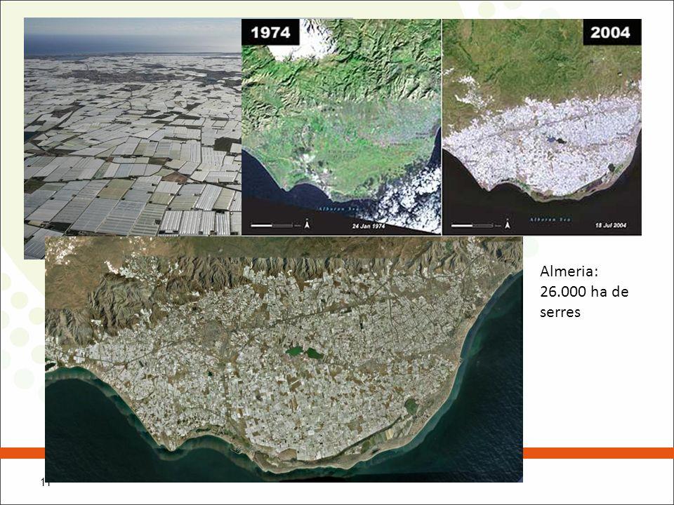 Almeria: 26.000 ha de serres