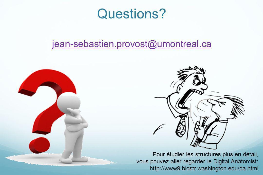 Questions jean-sebastien.provost@umontreal.ca