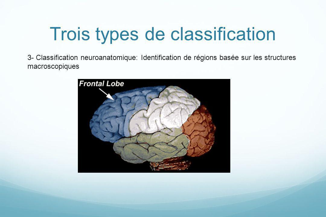 Trois types de classification