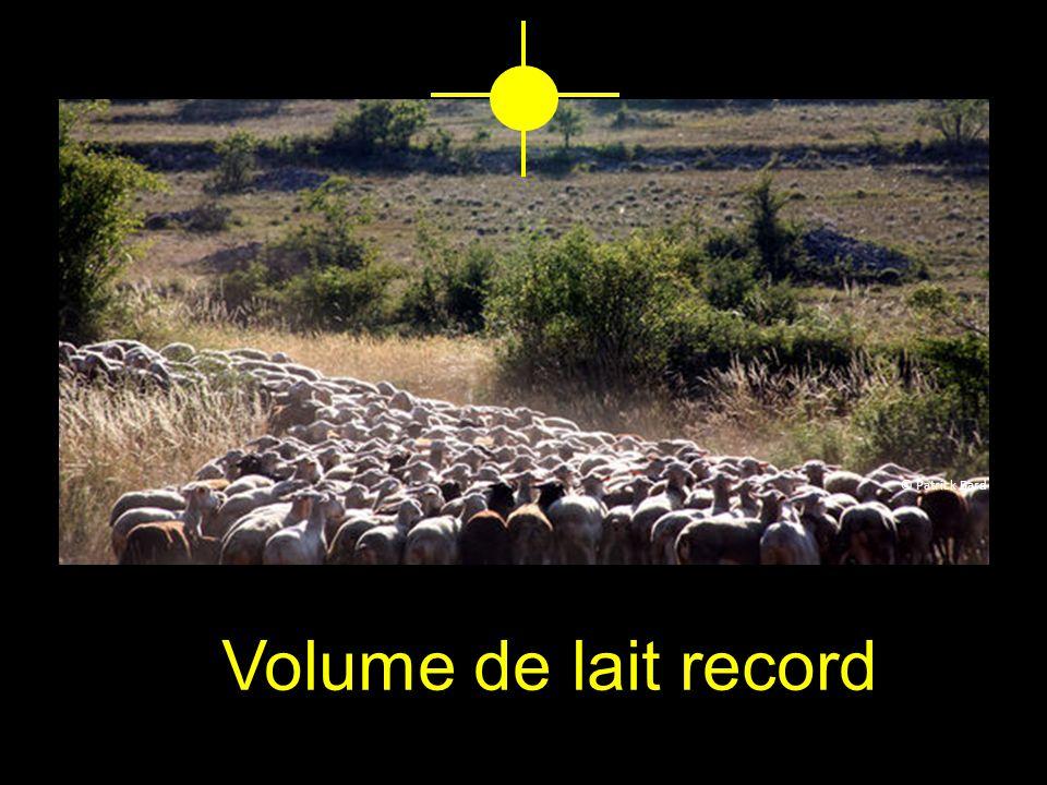 © Patrick Bard Volume de lait record