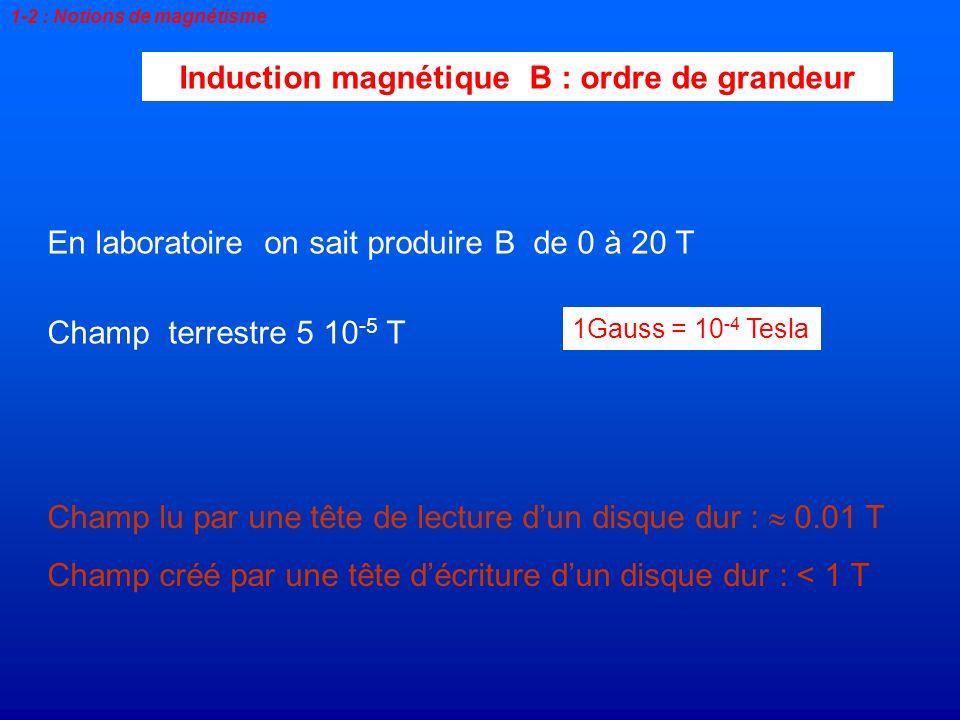 Induction magnétique B : ordre de grandeur