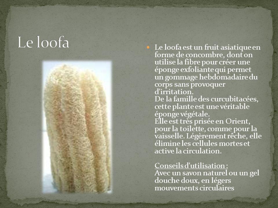 Le loofa