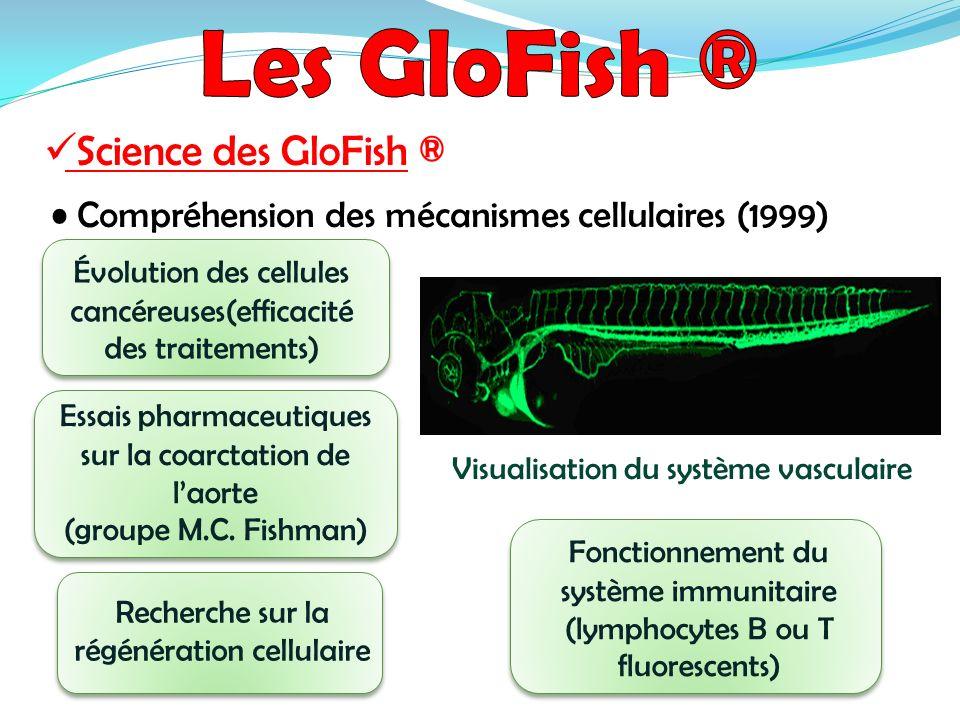 Les GloFish ® Science des GloFish ®