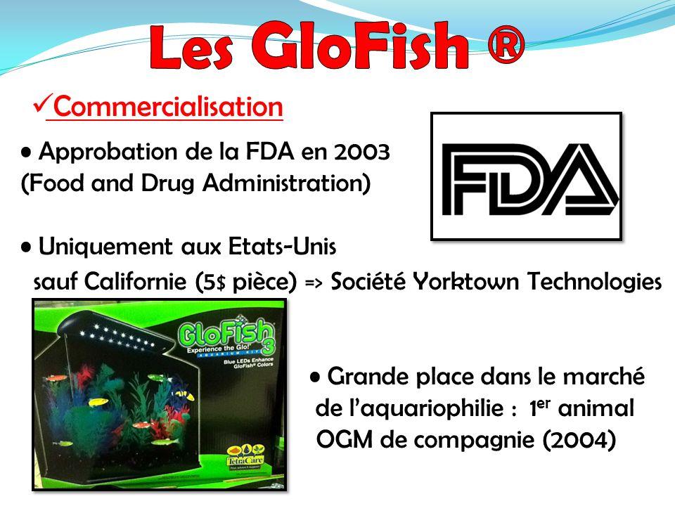 Les GloFish ® Commercialisation