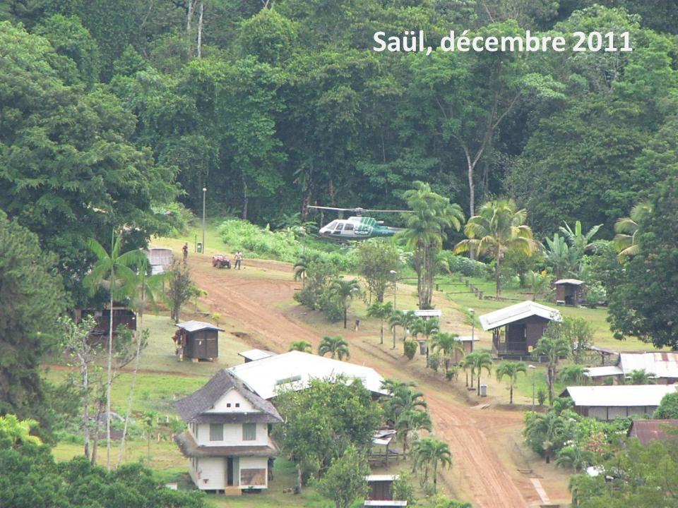 Saül, décembre 2011 Stage Géo de la Guyane - 2013