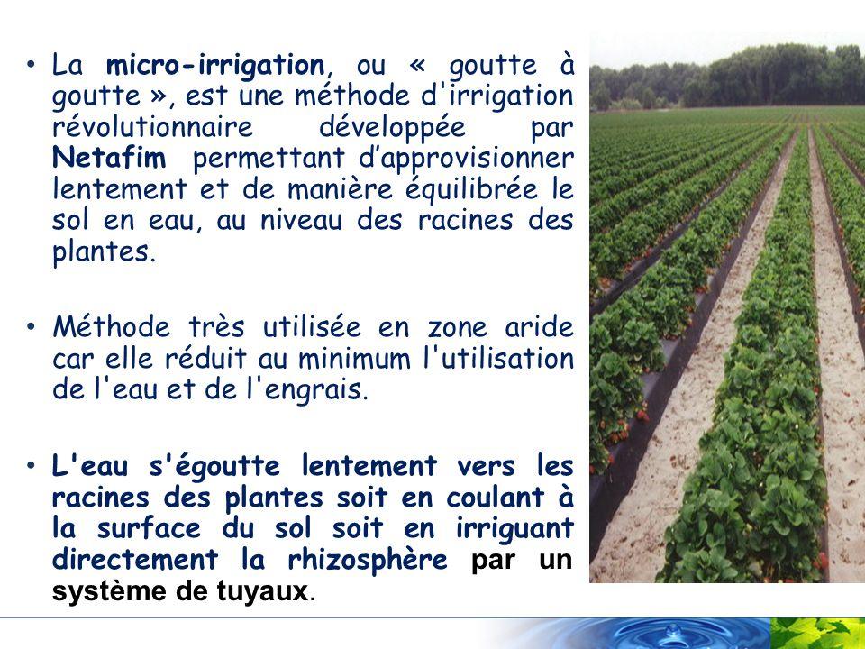 La micro-irrigation, ou « goutte à goutte », est une méthode d irrigation révolutionnaire développée par Netafim permettant d'approvisionner lentement et de manière équilibrée le sol en eau, au niveau des racines des plantes.