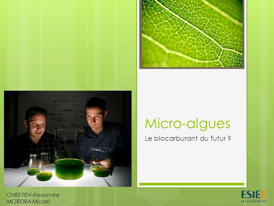 Le biocarburant du futur