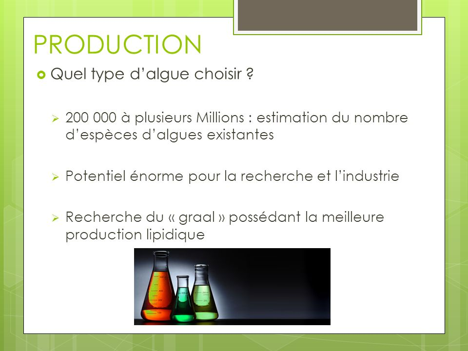 PRODUCTION Quel type d'algue choisir
