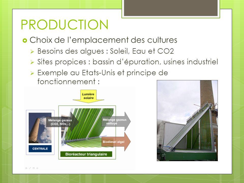PRODUCTION Choix de l'emplacement des cultures